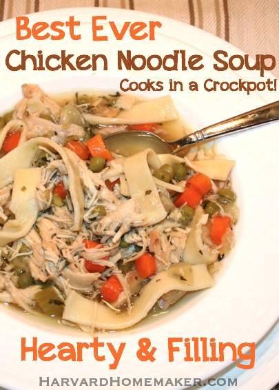 Best Ever Chicken Noodle Soup Made in a Crockpot - Harvard Homemaker