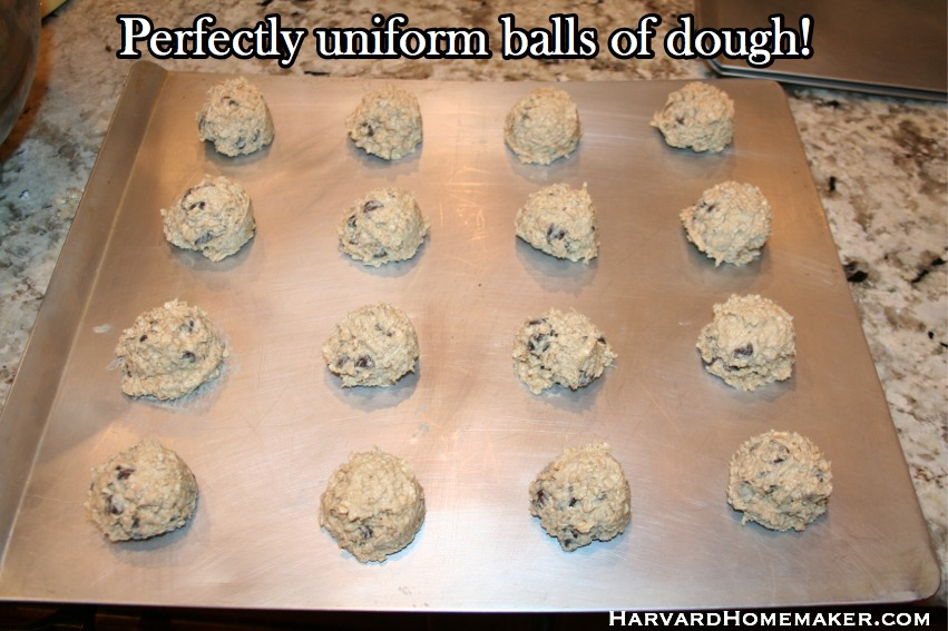 Oatmeal Chocolate Chip Cookies Uniform Balls of Dough