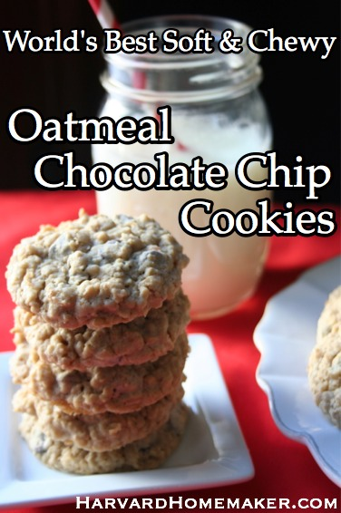 Worlds Best Oatmeal Chocolate Chip Cookies