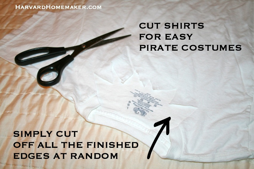 Disney Cruise Easy Pirate Costumes & A Momu0027s Guide: 15 Things to Pack for a Disney Cruise u0026 Other Travel ...