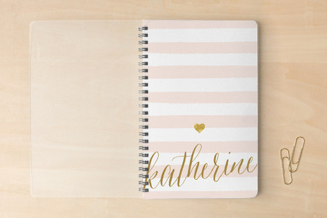 Safe Journal from Minted